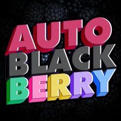 Auto BlackBerry (PROXIMAMENTE)