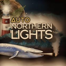 Auto Northern Lights...