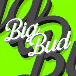 Big Bud (PROXIMAMENTE)